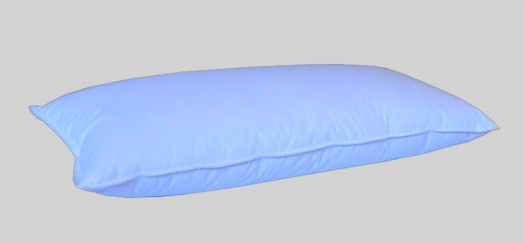 Bardzo dobry Poduszka (40 x 80 cm) pierze darte B 0,85 kg AB17